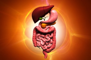 Gastroenterologen Berlin diagnostizieren Verstopfung