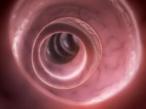 Gastroenterologen Berlin werten Kapselendoskopie aus
